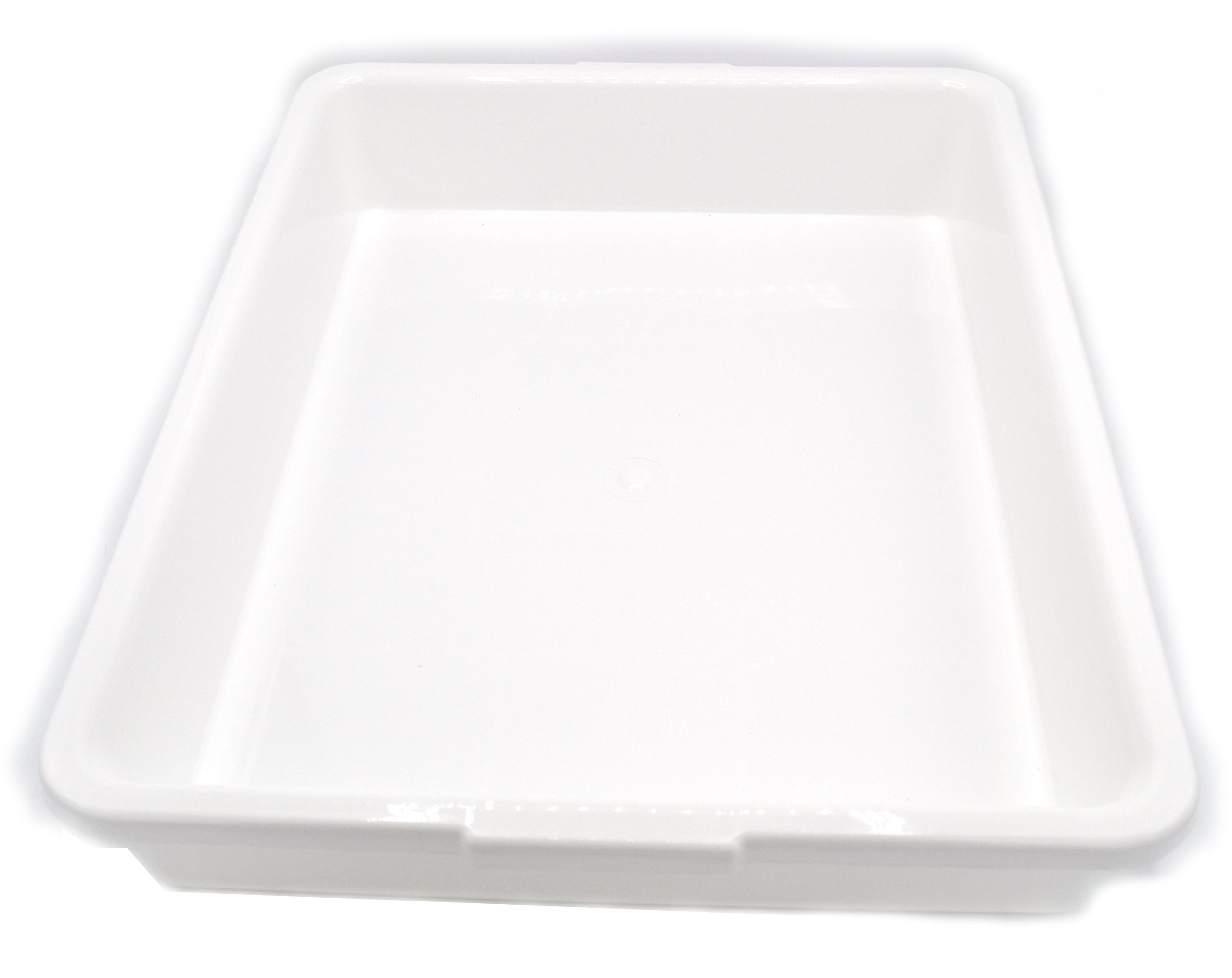 Laboratory Tray - 17.5 x 13.5 x 3 Inches - Polypropylene Plastic