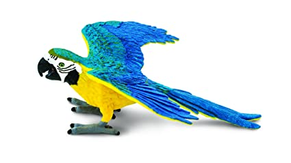 buy safari ltd blue gold macaw online at low prices in india