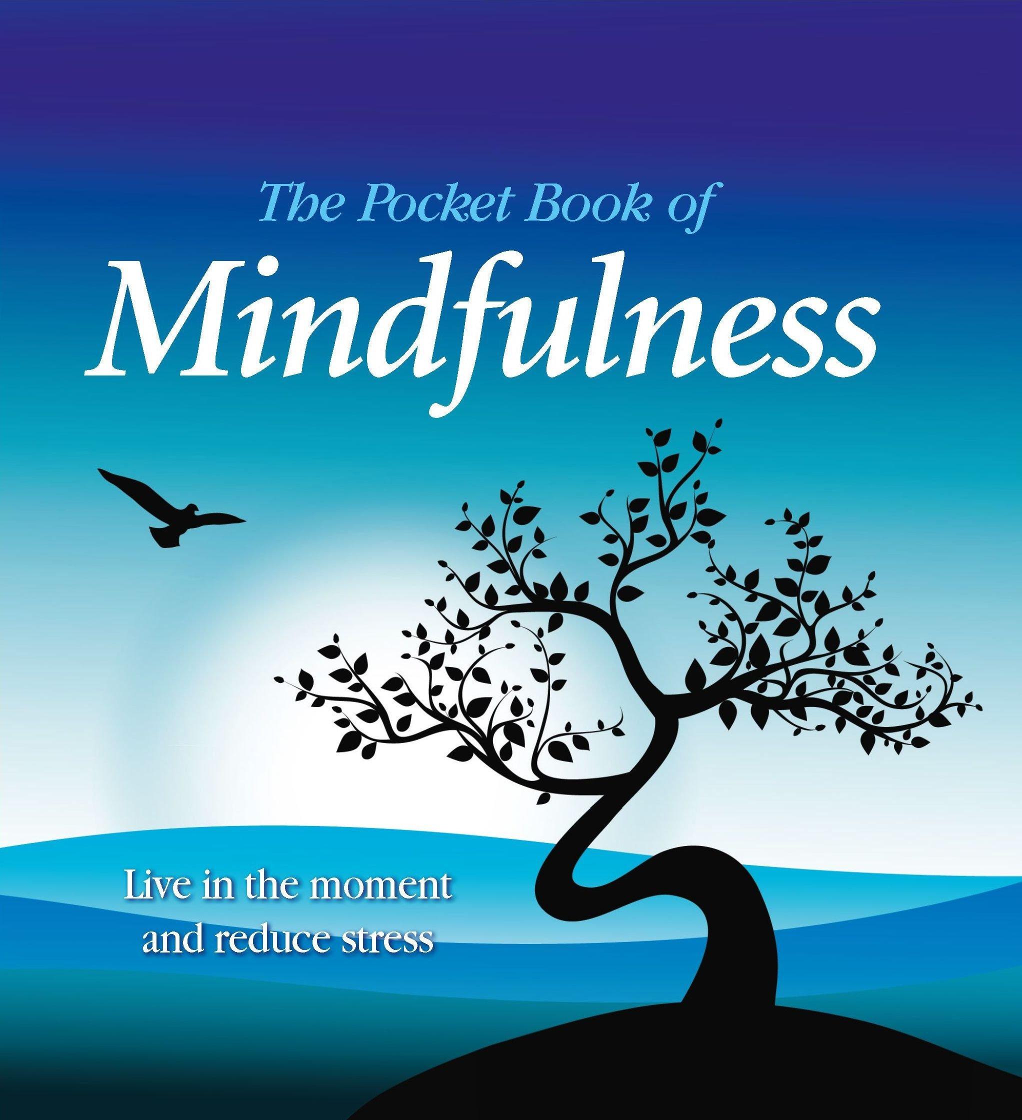 Download The Pocket Book of Mindfulness PDF