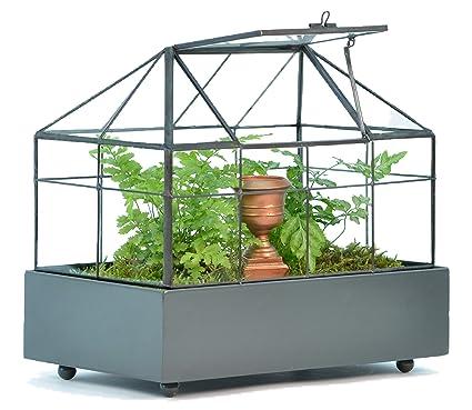 Amazon Com H Potter Rectangular Glass Terrarium Wardian Case
