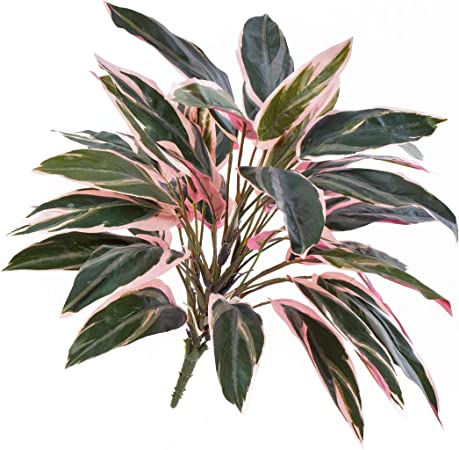 Artplants De Plastic Cordyline Fruticosa Thais With 36 Leaves Green Light Pink 20 50cm Silk Plant For Indoors Artificial Bush Amazon Co Uk Kitchen Home