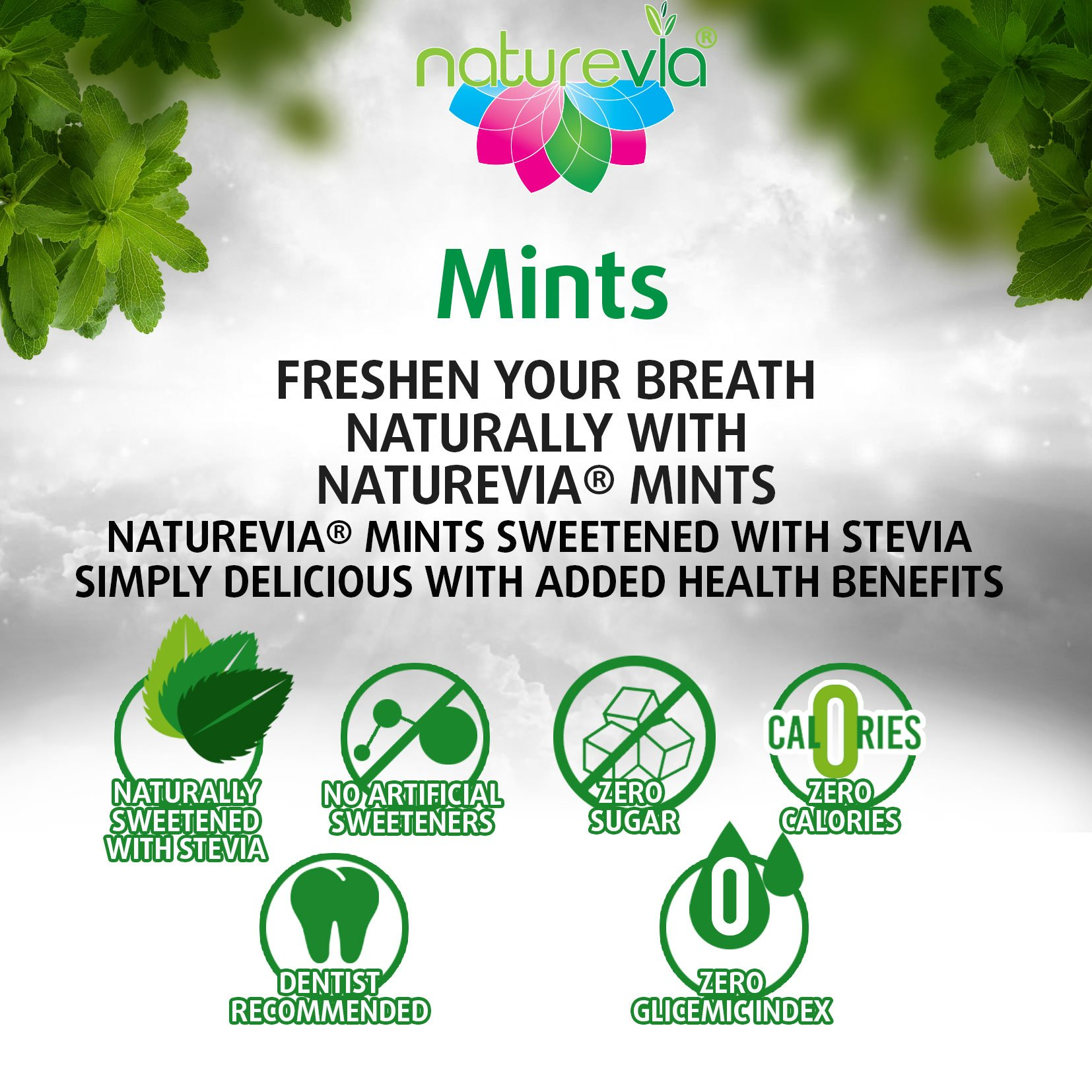Sugar-Free Mints - Cinnamon Flavor (12 PACK-100 tabs 18 g): Mints Naturally Sweetened with Stevia, Free of: Sugar, Carbs, Calories, Glycemic Index, Aspartame ; Dentist Recommended by Naturevia (Image #3)