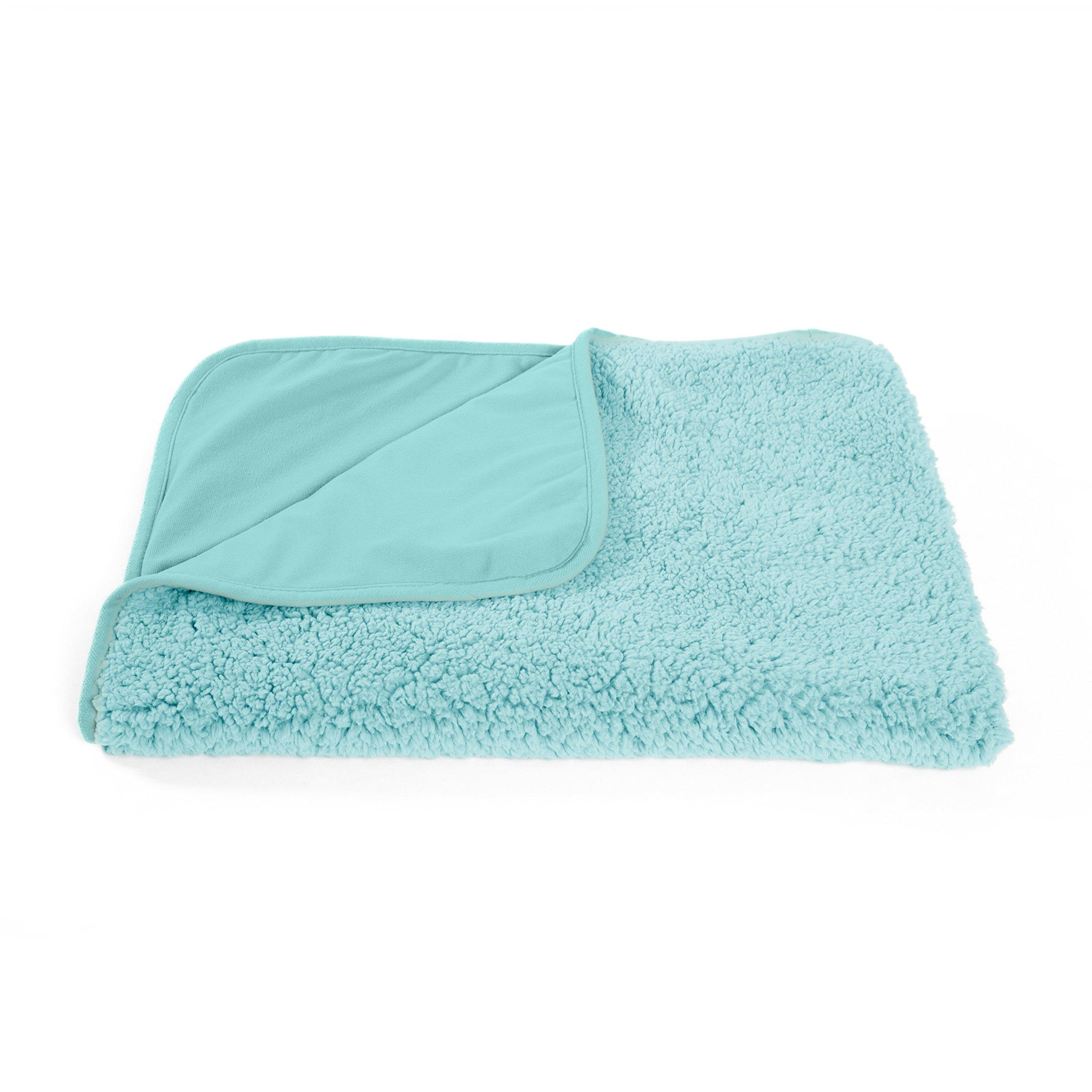 Best Friends by Sheri Sherpa Pet Throw Blanket/Portable Dog Mat/Cat Mat, 30''x40'', Teal
