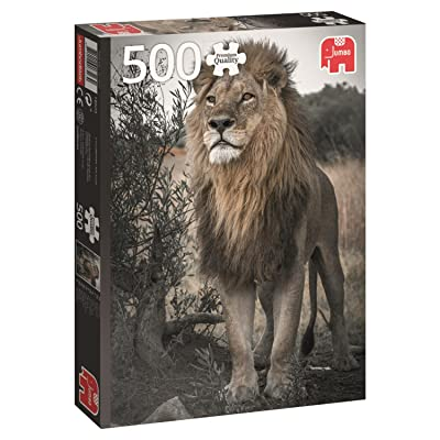 Jumbo 18523 Premium Collection Proud Lion 500 Piece Jigsaw Puzzle: Toys & Games