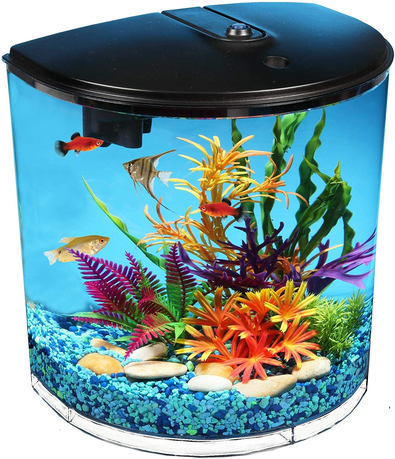 Koller Products AquaView 3.5 gallon Fish Tank with Power Filter & LED Lighting (AQ35000BLK)