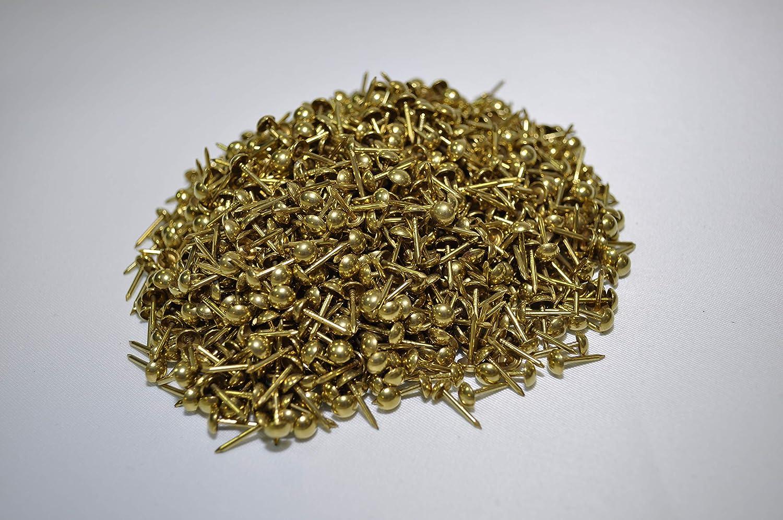 Bullette/clavos/tachuelas color latón/oro brillante, liso ...