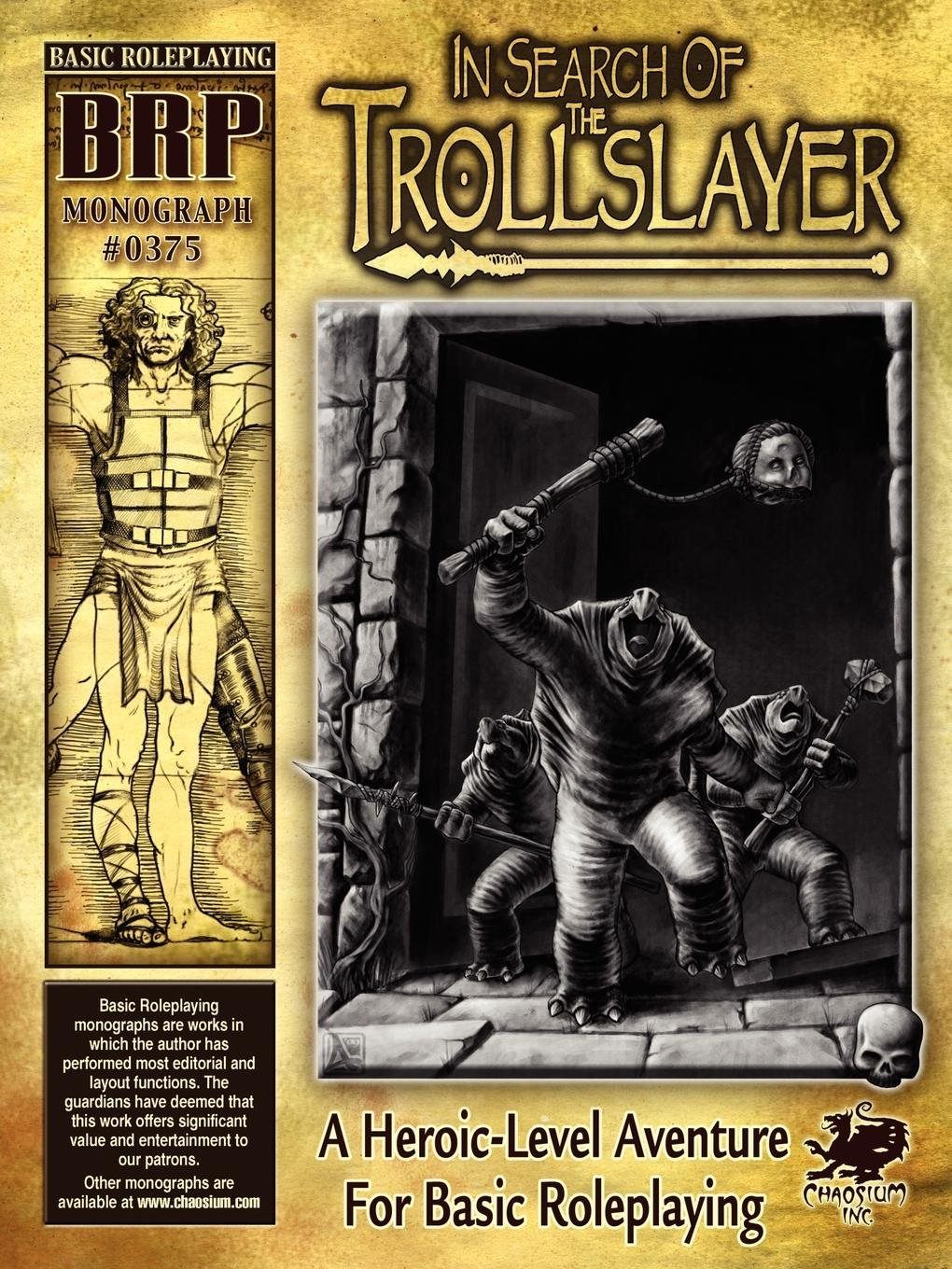 Read Online In Search of the Trollslayer pdf