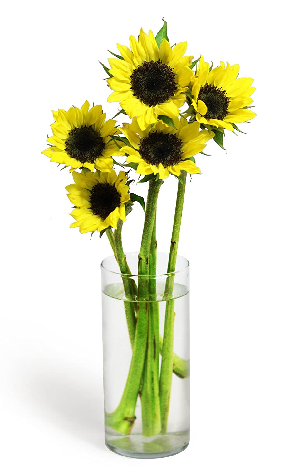 Amazon.com : Sunflower Bouquet (5 Stems) - Without Vase : Grocery ...