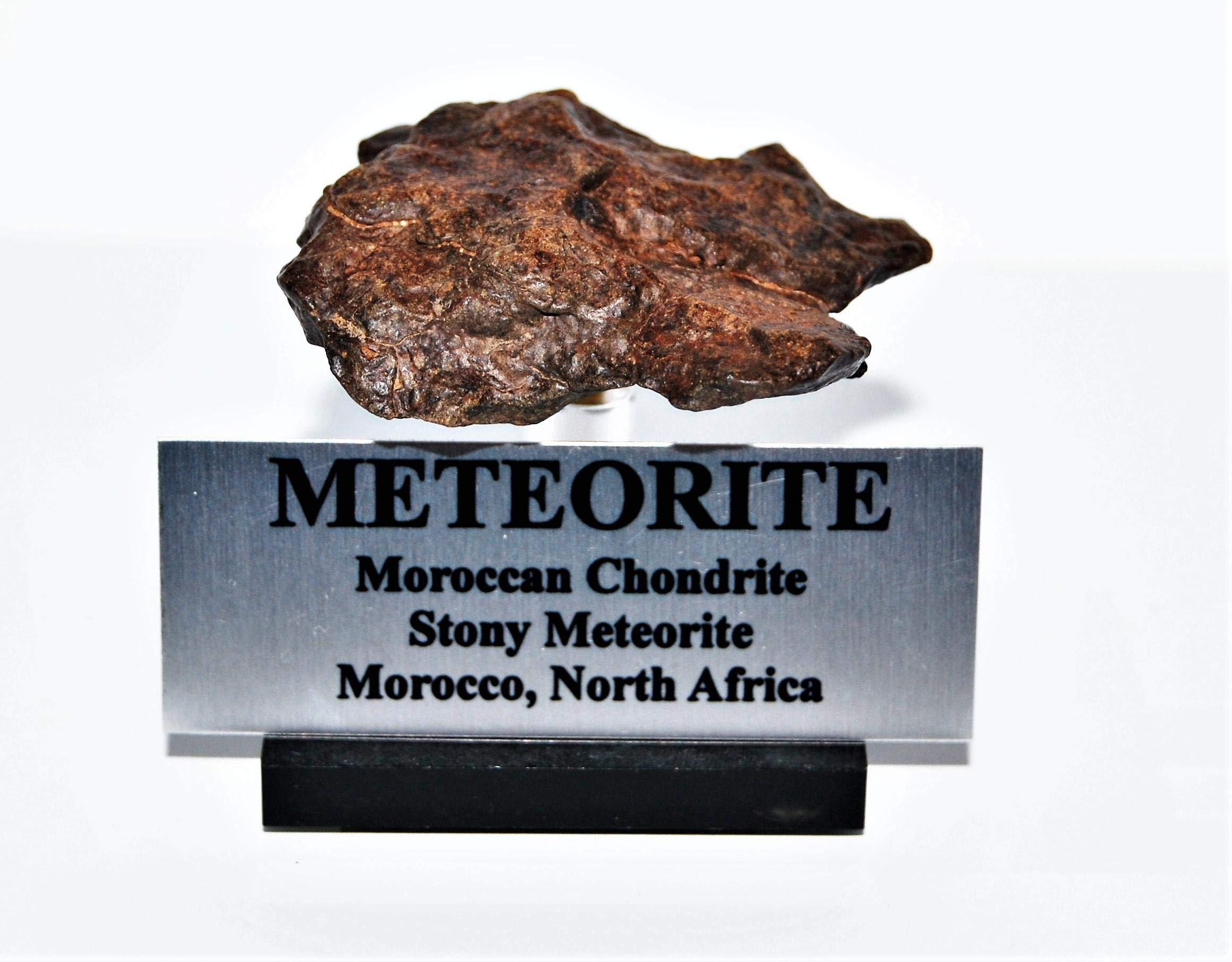 Fossils, Meteorites, & More Moroccan Chondrite 48.4 Grams w/Acrylic Display Stand, Label, COA #14310 7o