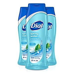 Dial Body Wash, Spring Water with All Day Freshness, 21-Fluid Ounces (Pack of 3)