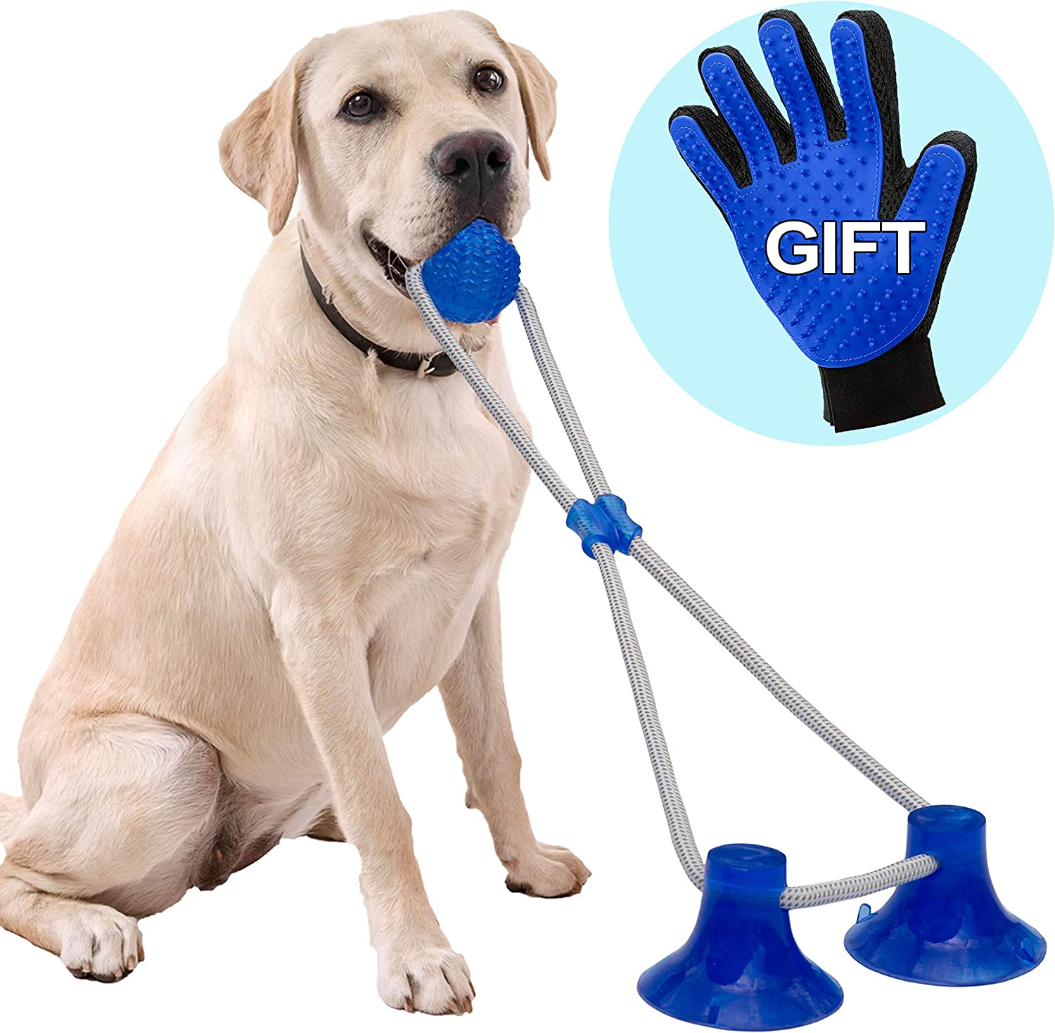 Pet Supplies : Tudoremade Suction Cup Dog Toy with Glove