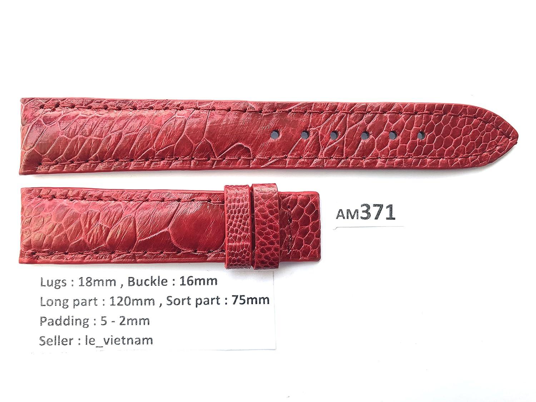 le_vietnam APPAREL メンズ US サイズ: 18mm / 16mm カラー: レッド  B077Y47YZT
