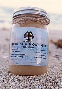 Wildcrafted 100% Organic Irish Sea Moss Gel, Vegan Super Cell Food Rich in Vitamins A, B, C, D, E by Get Wavy Organics
