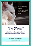 """""""I'm Home!"""" a Cat's Never Ending Love Story- Cat Reincarnation Stories, Animal life after death, Animals Spirits, Pet life after death, Animal communication"""