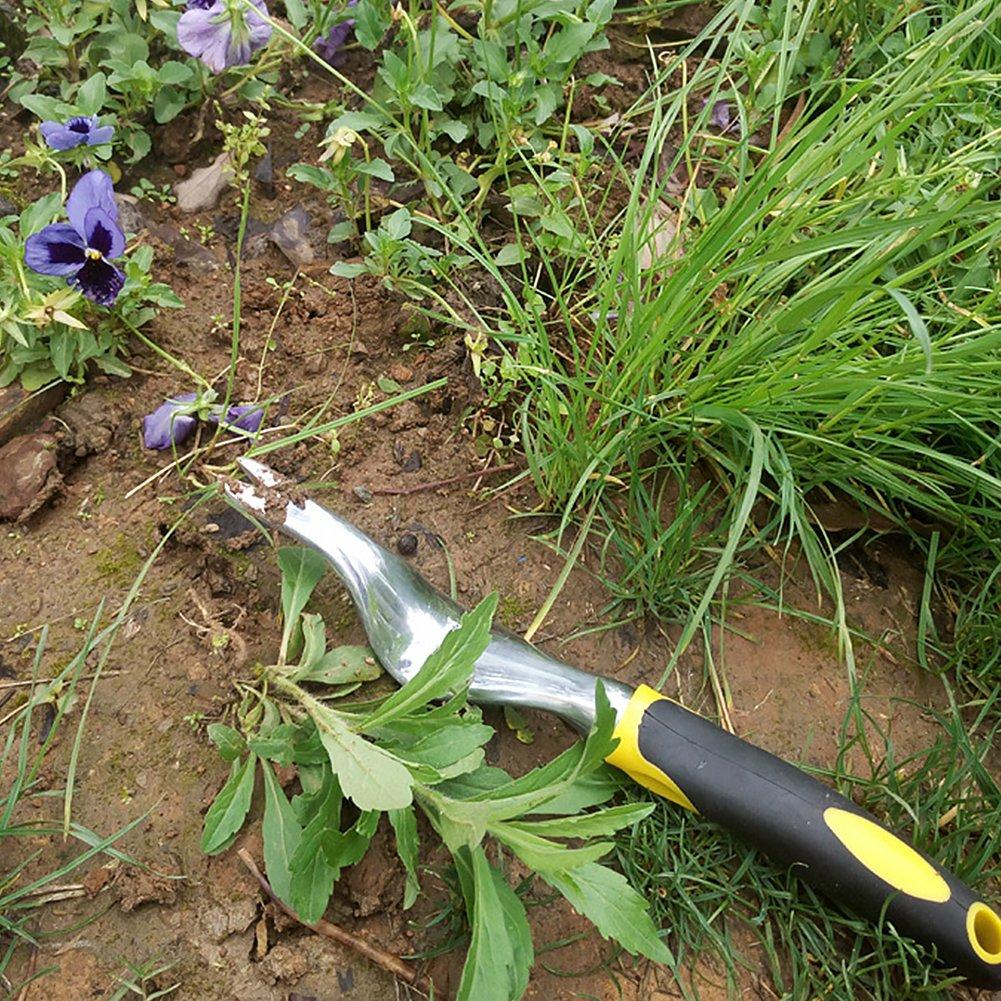 Hinmay Main D/ésherbage Fourchette pour lH/éritage de Jardin Plantation et Outils de D/ésherbage Extracteur de Mauvaises Herbes