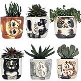 Window Garden Cat Planter Pot - 6 Mini Succulent Kitty Pots - Cute Flower Pots for Indoor Plants - Cat Decor Vase for Cactus,