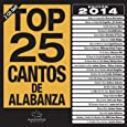 Top 25 Cantos De Alabanza 2014 [2 CD]