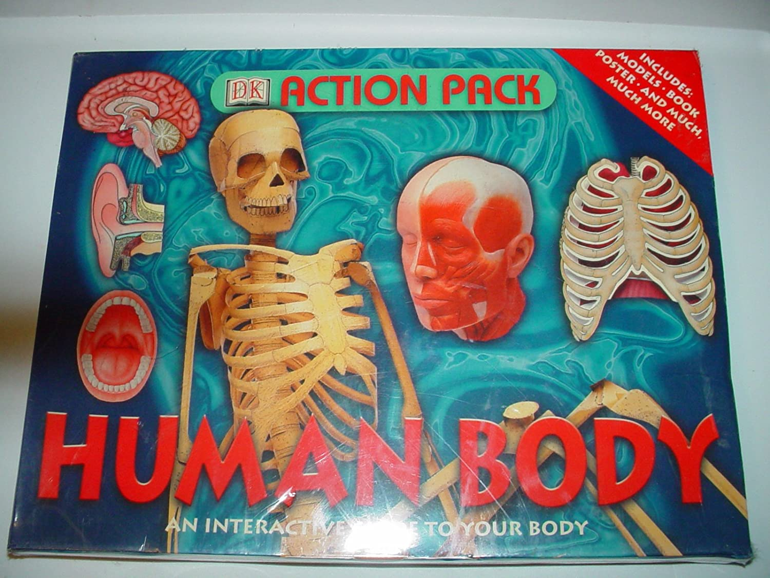 Amazon Dk Action Pack Human Body An Interactive Guide To Your