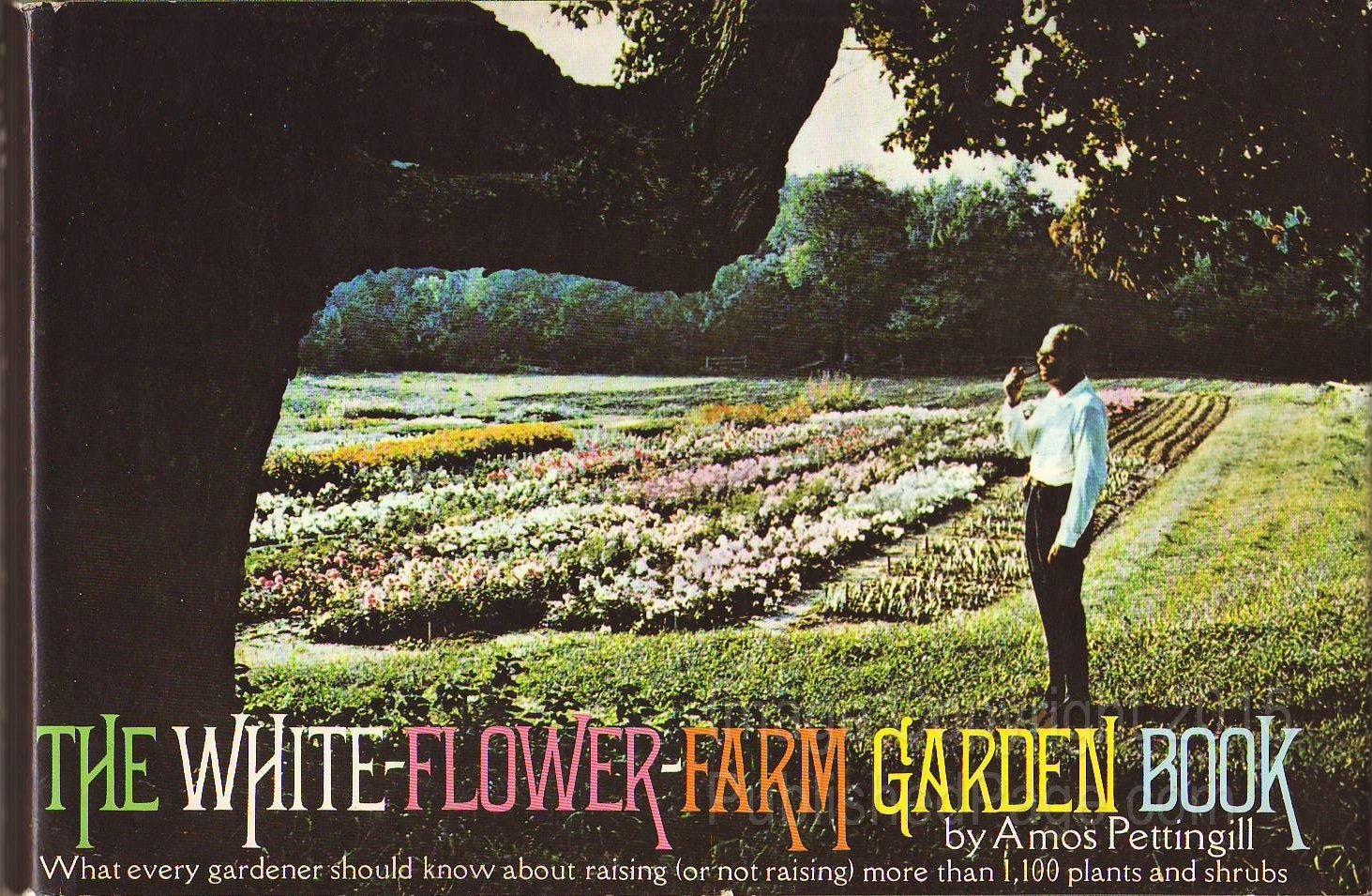 The white flower farm garden book amos pettingill 9780394468723 the white flower farm garden book amos pettingill 9780394468723 amazon books mightylinksfo