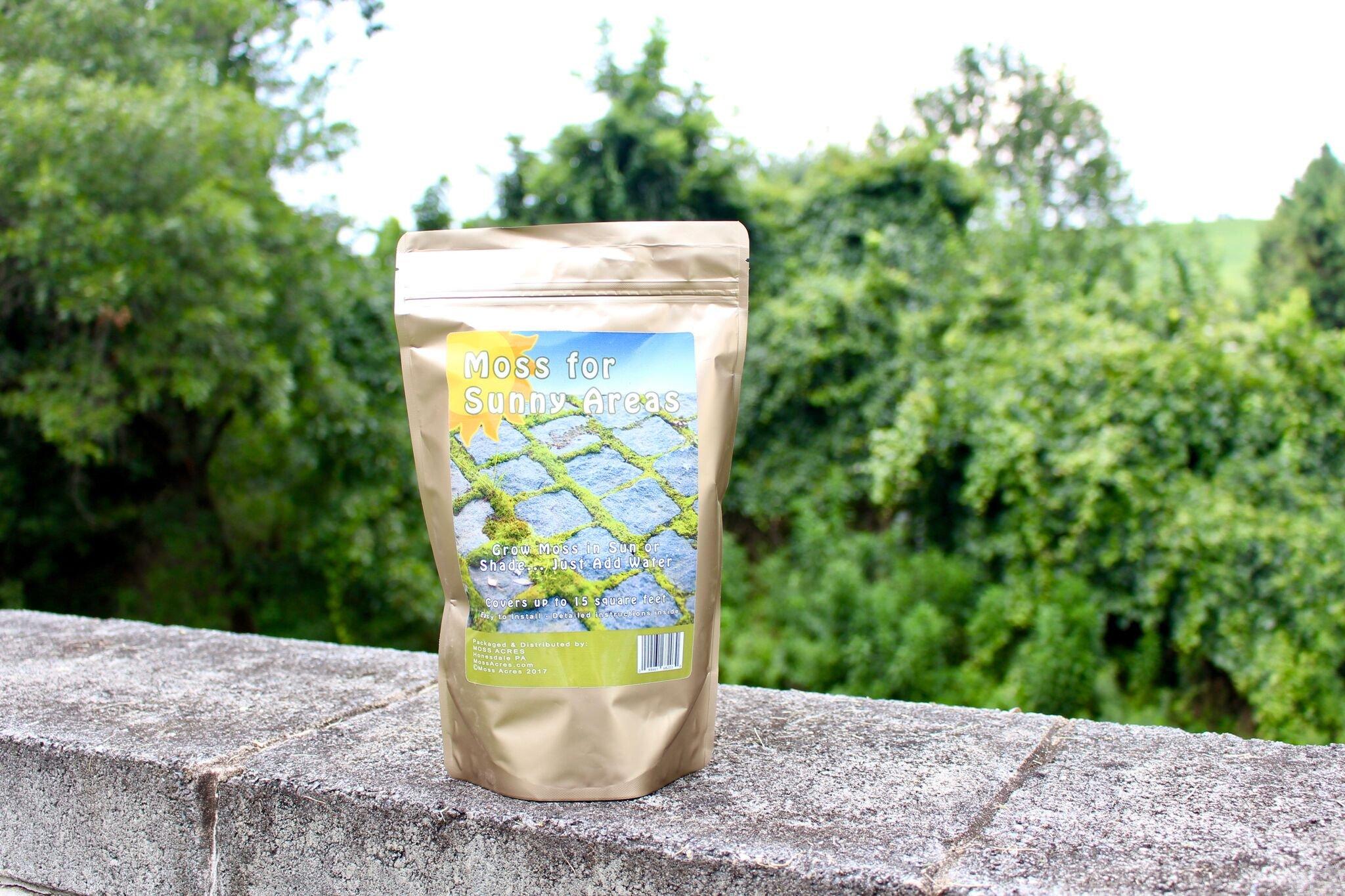 Moss Acres New! Moss for Sunny Areas – Sun-Tolerant Moss Milkshake Pre-Ground Bryum Caespiticium Fragments – 28 oz.