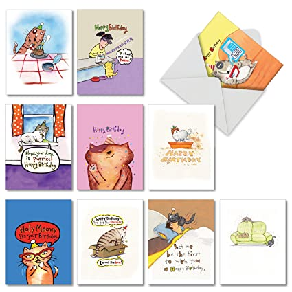 10 Kitty Birthday Greeting Cards With Envelopes