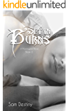 Set In Burns (Morningstars Book 3)