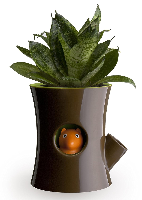 Amazon.com: Qualy Log U0026 Squirrel Plant Pot   Brown/green: Patio, Lawn U0026  Garden Nice Design