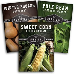 Survival Garden Seeds Three Sisters Collection Seed Vault - Non-GMO Heirloom Seeds for Planting Vegetables - Sweetcorn, Butternut Squash & Pole Beans