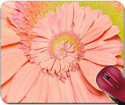amazon com liili mousepad id 26029111 gerber flower spiral