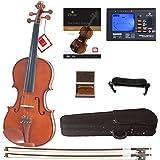 Cecilio CVN-200 Solidwood Violin with D'Addario Prelude Strings, Size 4/4 (Full Size)