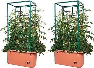 Hydrofarm GCTR 10 Gal Tomato Trellis Self Watering Garden Grow System on Wheels (2 Pack)