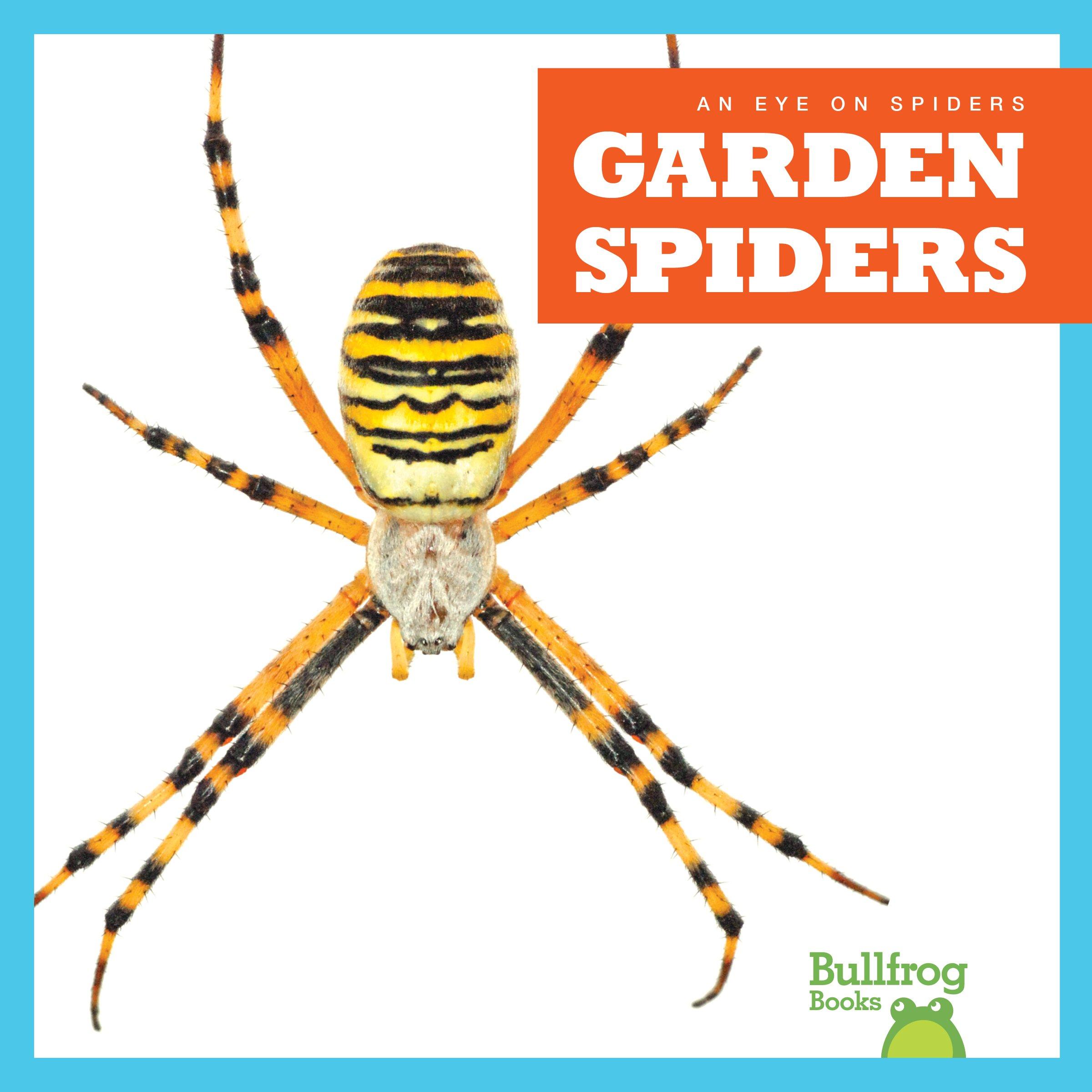 Garden Spiders (Bullfrog Books: An Eye on Spiders)