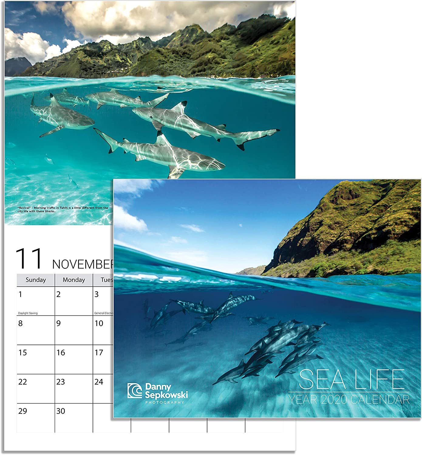 Danny Sepkowski Photography 2020 Wall Office Yearly Monthly Calendar Sea Life 13 Month in Hawaii Tahiti Pacific Ocean by Xpressive Collections | Great Gift Idea