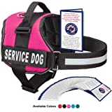 Service Dog Harness With Hook and Loop Straps and