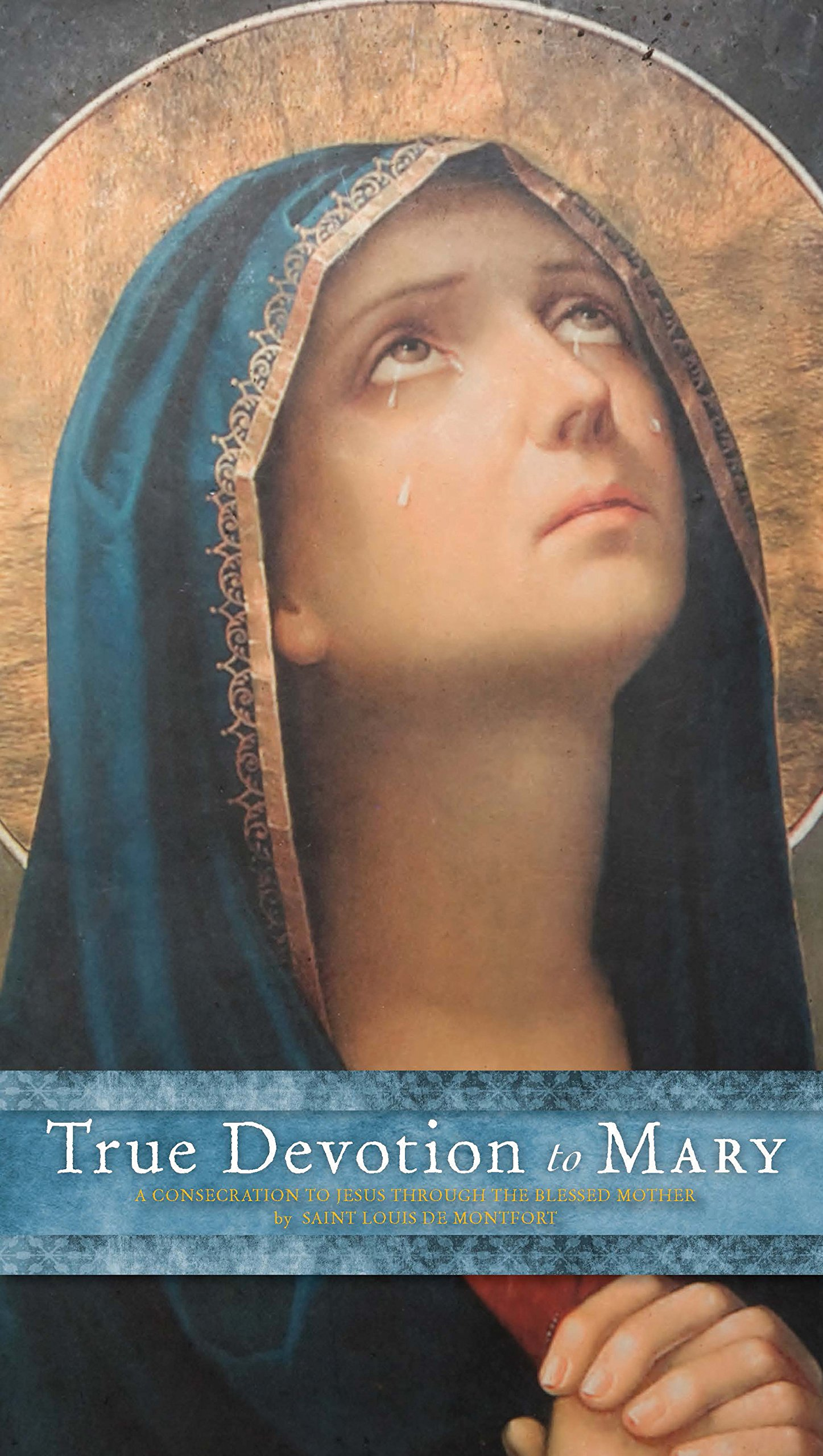 Download True Devotion to Mary: A Consecration to Jesus Through the Blessed Mother pdf epub