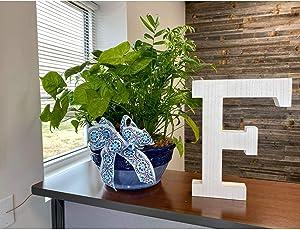 Large Wood Letter  Distressed White Wash   Alphabet Wall Décor   Monogram Letter   Alphabet Letters   Free Standing Letters   Wall Letters   Letter F
