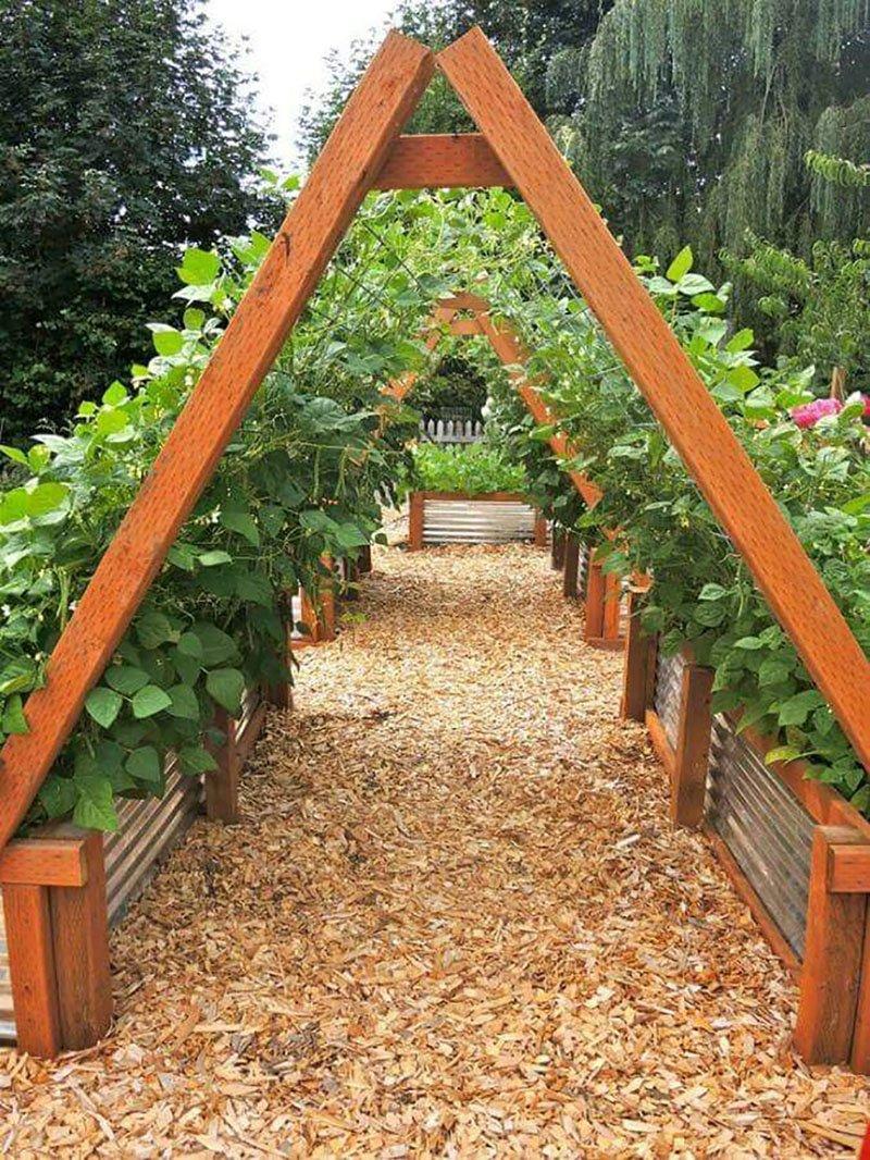 Happy House Garden Twine, 150 feet (50 feet @ 3 Hanks), Made of Coir Fiber
