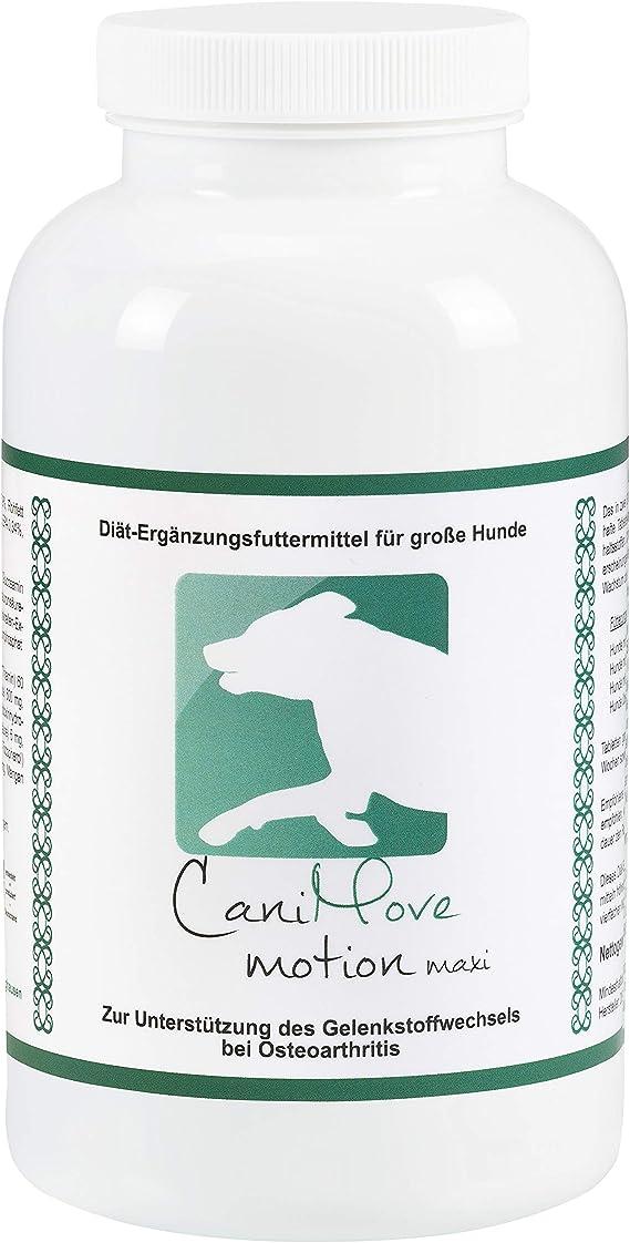 CaniMove motion maxi - 100 pastillas para articulaciones (340 g) para perros grandes con problemas de articulaciones y movimientos de todo tipo