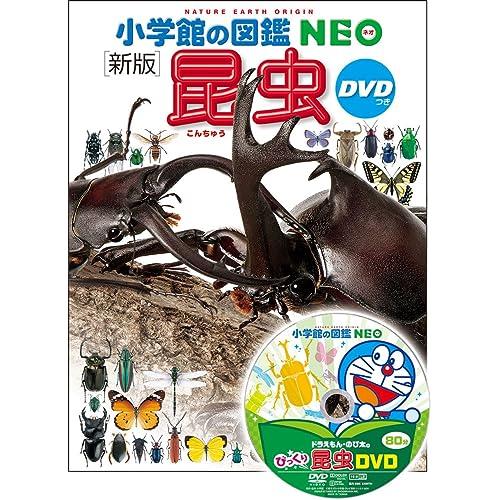学館 小学館の図鑑NEO[新版]昆虫 DVDつき