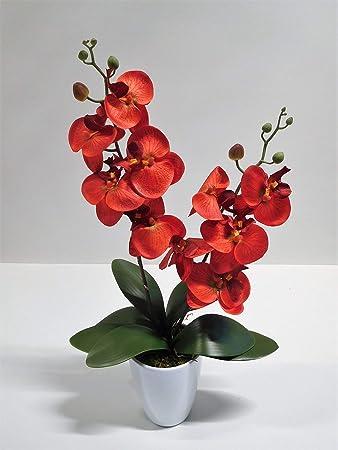 Ziegler Orchidee Phalaenopsis 2 Rispen Kunstpflanze Dekopflanze 55 cm rot 60399-02 getopft F73