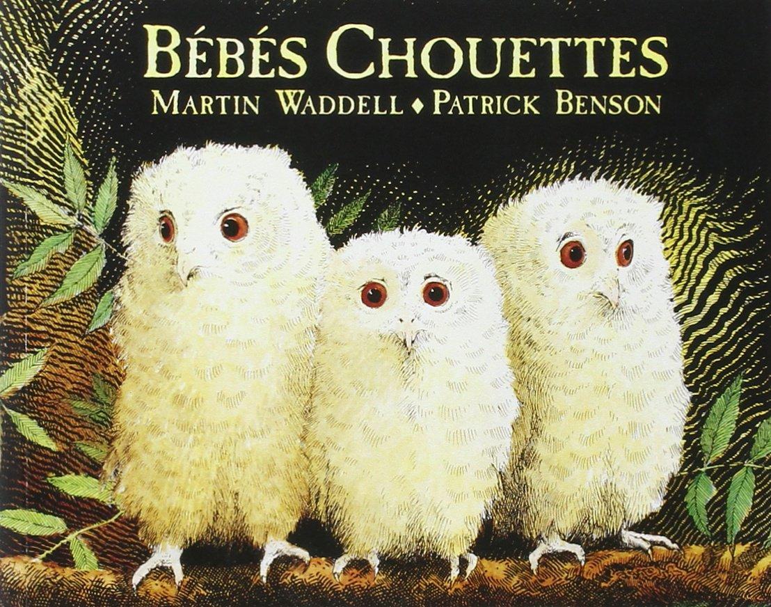 Amazon.fr - Bébés chouettes - Waddell, Martin, Benson, Patrick ...