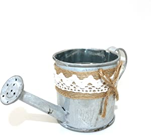 CVHOMEDECO. Rustic Mini Tin Watering Can Planter, Metal Flower Pot Succulent Container Garden Bucket for Balcony Patio Watering Can with Hemp Rope Décor.