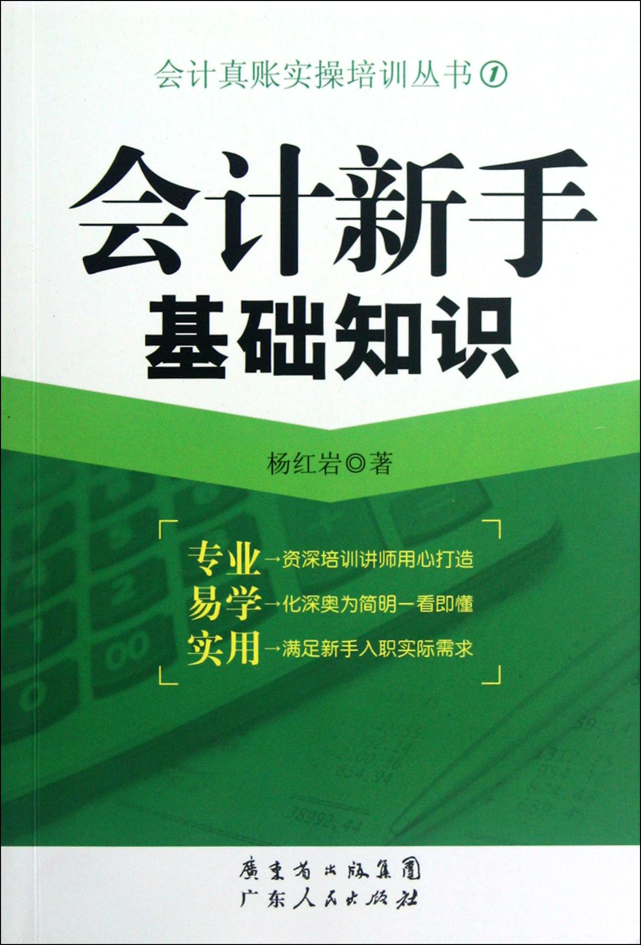 Basic Knowledge of Accounting Novice (Chinese Edition) ebook