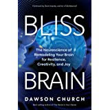 Bliss Brain: The Neuroscience of Remodeling Your Brain for Resilience, Creativity, and Joy