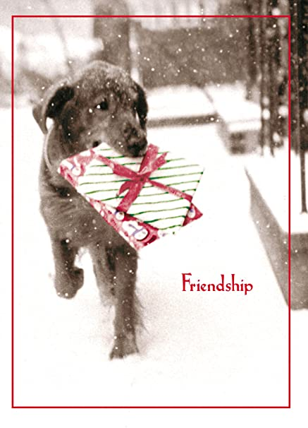 Amazon avanti christmas cards friendship is the best gift of avanti christmas cards friendship is the best gift of all 10 count m4hsunfo