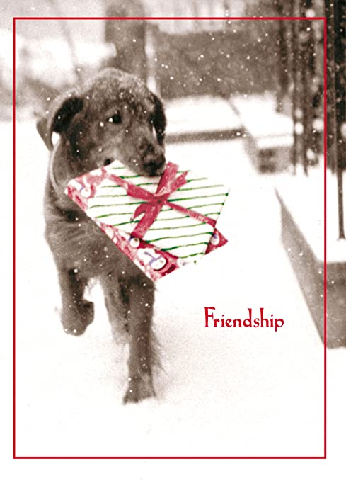 Amazon.com: Avanti Prensa Tarjetas de Navidad, la amistad es ...