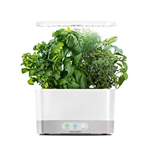 AeroGarden Harvest - White