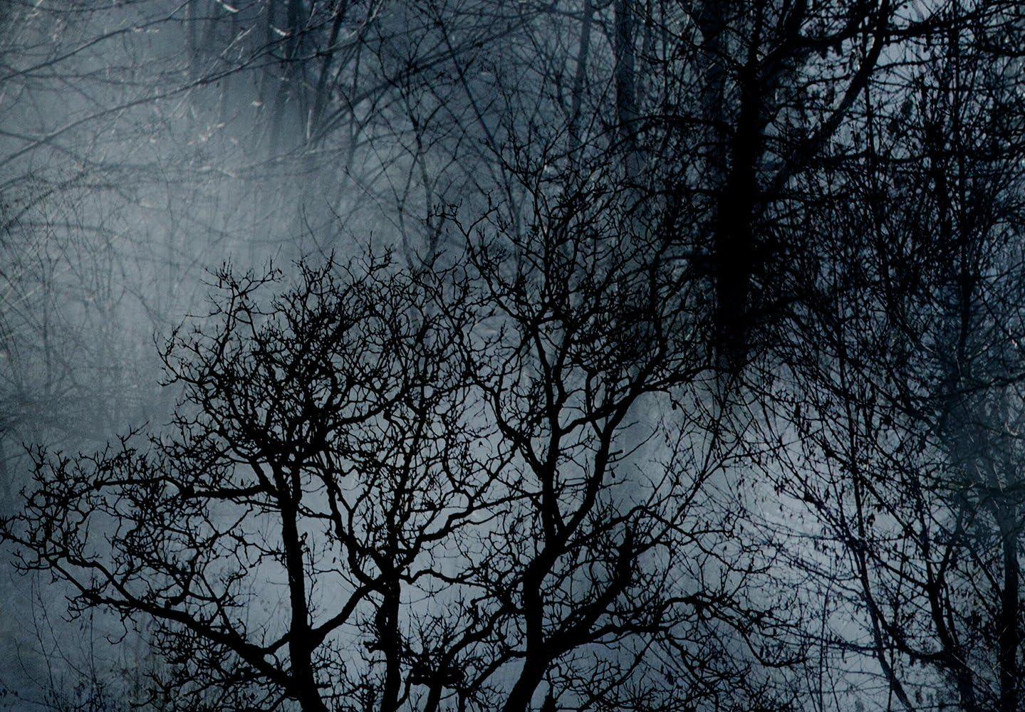 murando Impression sur Toile intissee Loup 90x60 cm Tableau 1 Peice Tableaux Decoration Murale Photo Image Artistique Photographie Graphique Berge Paysage Blau Noir Blanc g-A-0140-b-b