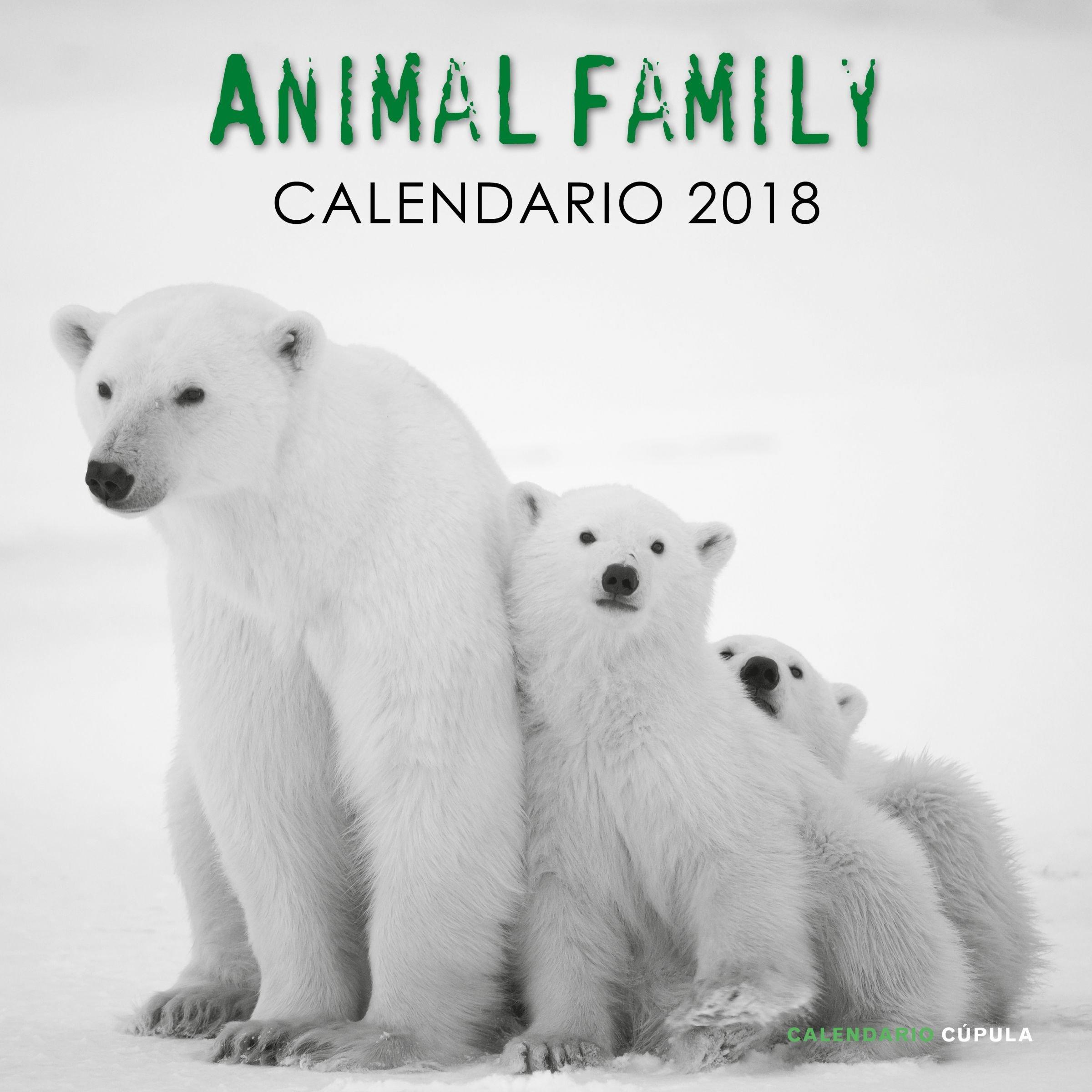Calendario Animal Family 2018 (Calendarios y agendas): Amazon.es ...