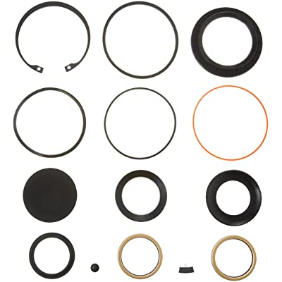 R. H. Sheppard 5545741 Sector Shaft Kit with Snap Ring/L-Seal: Automotive